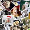 26 000 000 изображений в нашем каталоге