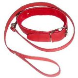 red collar with leash