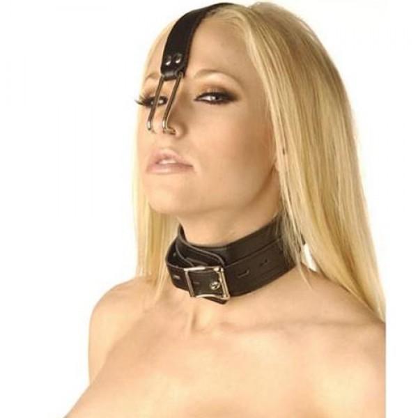 BDSM (БДСМ) - <? print Ошейник с крючками для носа; ?>