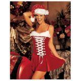 Carnival costume Christmas themes.