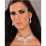 Beautiful set: sparkling earrings and necklace