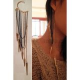 Earring-hook.Gold spikes.