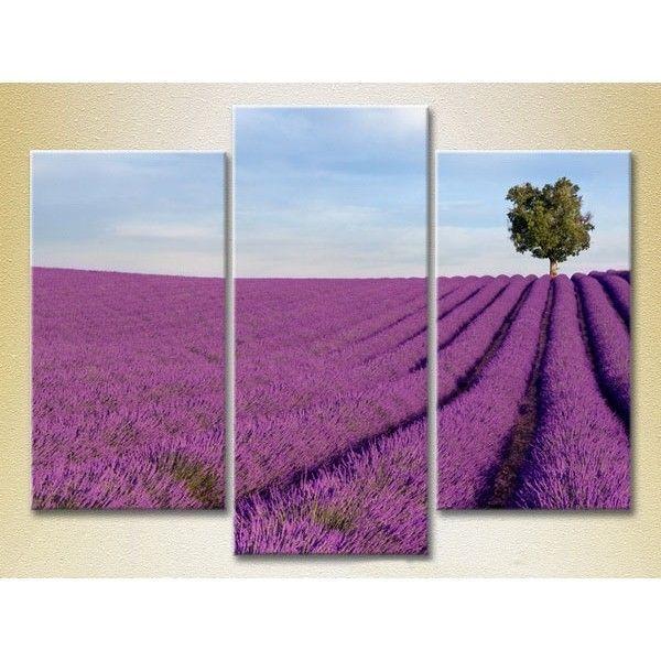 Модульная картина из 3 частей, поле цветов, 140х90