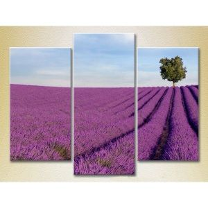 Modular picture in 3 parts, a field of flowers, 140С…90. Артикул: IXI26456
