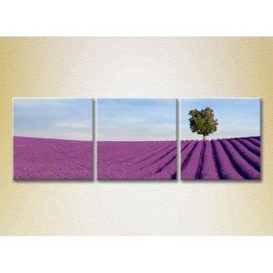 Модульная картина из 3 частей, 150х50 - Интерьер, декор
