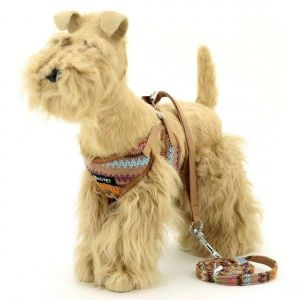 SALE! The harness and leash for dogs