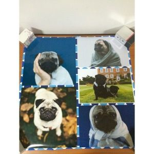 SALE! Pugs poster on photo paper