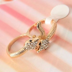 Stylish double ring