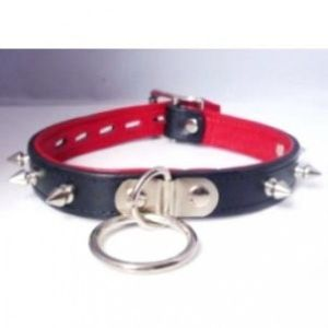 Collar with studs and ring