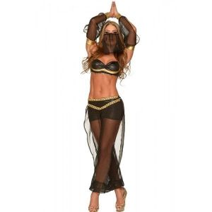 Hot Sexy 4pcs Belly Dancer Costume
