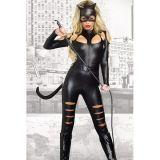 Erotic costume Cat