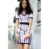 Fashion Ivory Dion Printed Dress