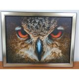 SALE! The Picture Of The Owl