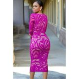 Deep Fuchsia Lace Nude Low Neckline Midi Dress