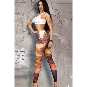 Леггинсы с принтом дракона - Спортивная одежда