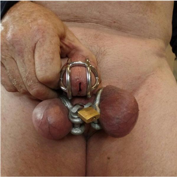 BDSM (БДСМ) - <? print Фиксатор на пенис из нержавеющей стали; ?>