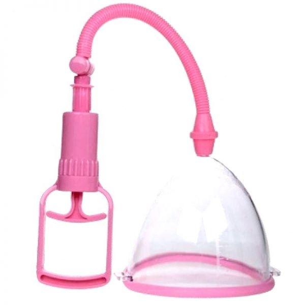 bdsm-vakuumnaya-pompa