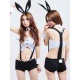 Sexy Bunny Girl Costume