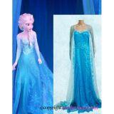 Elsa Dress Cosplay Costume in Frozen