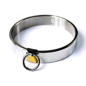 Female Luxury Stainless Steel heavy Duty Collar with Brass Lock Joints