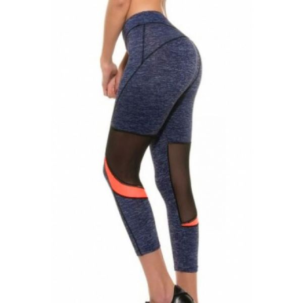 Mesh Pieced Navy Sporty Crop Leggings