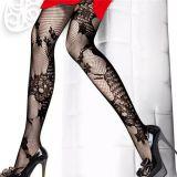 Leg Wear & Stockings