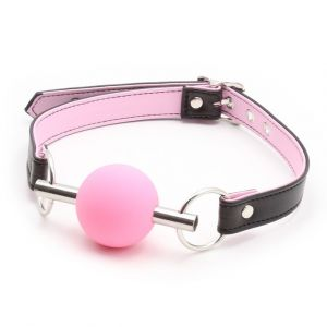 Metal Rod Silicone Ball Gags Pink