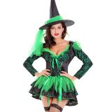 Green One Size Witch Halloween Costume
