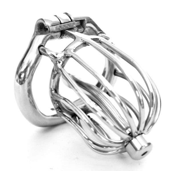 BDSM (БДСМ) - <? print Stainless steel Male chastity devices Latest Design; ?>