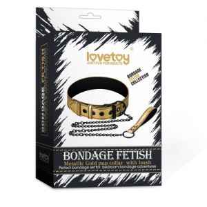 Bondage Fetish Metallic Gold Pup Collar With Leash