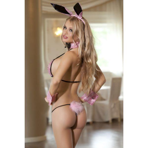 Sexy Bunny & Cat costume